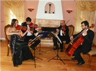 Bravo String Quartet